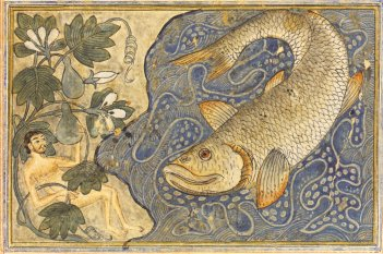 Yunus (Jonah) and the 'whale' Rashid al-Din